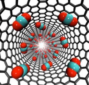 Carbon dioxide storage inside carbon nanotubes. ©Jason Reese and Matthew Borg